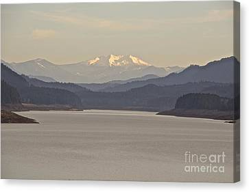 Looking For Diamond  Canvas Print by Tim Rice