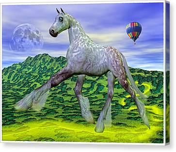 Looking For Dorothy Canvas Print by Betsy Knapp