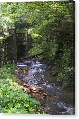 Looking Glass Creek - North Carolina Canvas Print