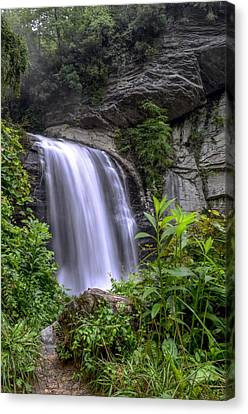 Looking Glass Falls Canvas Print by Bob Jackson