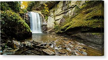 Looking Glass Falls Canvas Print by Cathy Donohoue