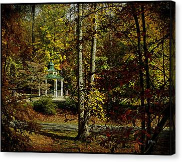 Canvas Print featuring the photograph Looking Into Fall by James C Thomas