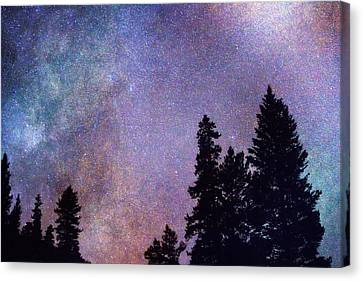 Looking Into The Heavens Canvas Print by James BO  Insogna