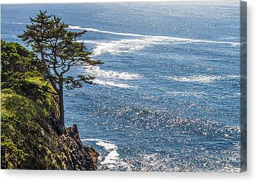 Canvas Print featuring the photograph Looking Out by Dennis Bucklin