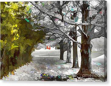 Looking Through The Tunnel Canvas Print by Jim Lepard