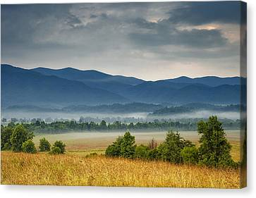 Looking To The Mountains Canvas Print by Andrew Soundarajan