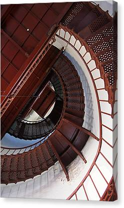 Looking Up Canvas Print by Bernard  Barcos
