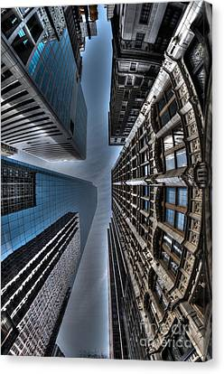 Looking Up Canvas Print by Mark Ayzenberg