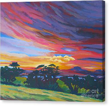 Looking West From Amador Hills Canvas Print