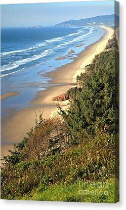 Lookout Over The Cape Canvas Print by Adam Jewell