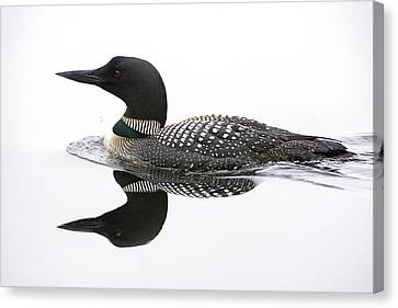 Loon #2 Canvas Print by Wade Aiken