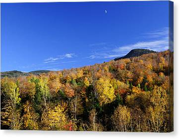 Loon Mountain Foliage Canvas Print by Luke Moore