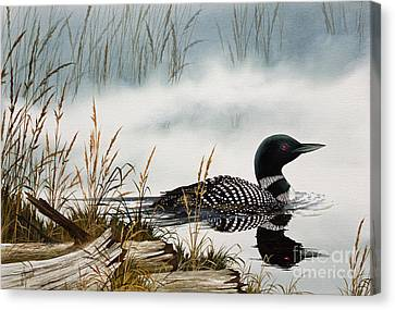 Loons Misty Shore Canvas Print