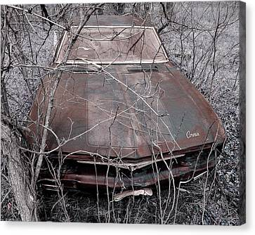 Canvas Print featuring the photograph Lost Corvair Adjustment  by Christopher McKenzie