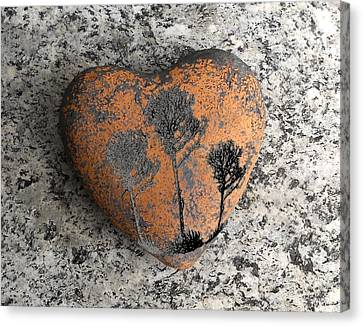 Lost Heart Canvas Print by Juergen Weiss
