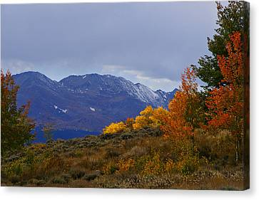 Lost In Autumn Canvas Print by Jeremy Rhoades