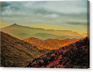 Lost In Time Canvas Print by Wallaroo Images