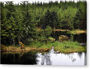 Canvas Print featuring the photograph Lost In Wild Paradise 2 by Davina Washington