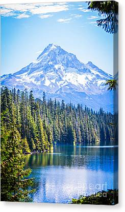 Lost Lake Morning Canvas Print by Patricia Babbitt