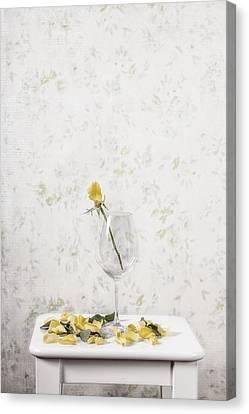 Lost Petals Canvas Print by Joana Kruse