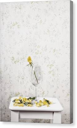 Lost Petals Canvas Print by Joana Kruse