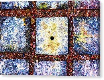 Lot Number 4 Of The Universe Canvas Print by Alexander Senin