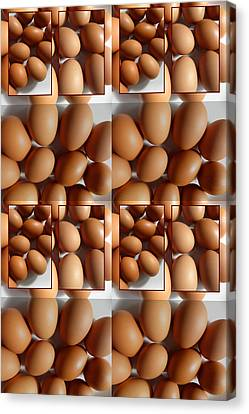 Lots Of Brown Eggs Canvas Print