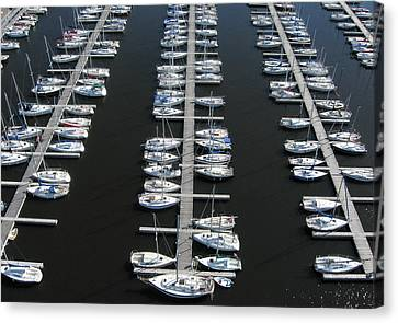 Lots Of Yachts Canvas Print by Rob Huntley