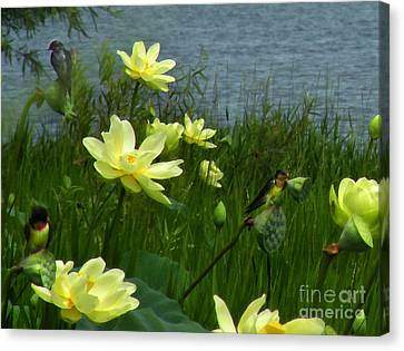 Canvas Print featuring the photograph Lotus And Swallows by Deborah Smith