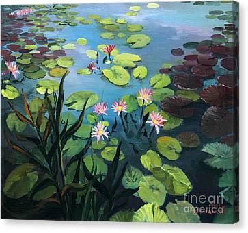 Lotus Flowers  Canvas Print by Kiril Stanchev