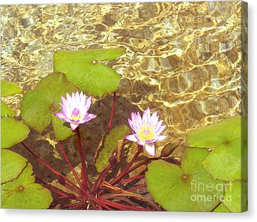 Canvas Print featuring the photograph Lotus by Mini Arora