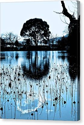 Lotus Pond Winter - 4 Canvas Print