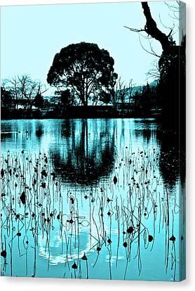 Lotus Pond - Winter Canvas Print