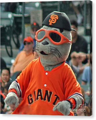 Lou Seal San Francisco Giants Mascot Canvas Print by Tap On Photo