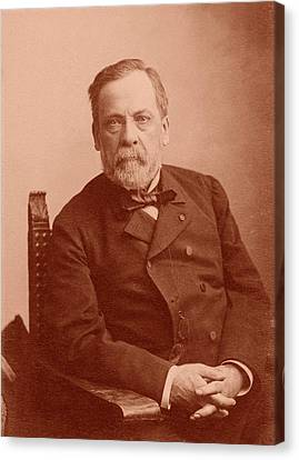 Louis Pasteur Canvas Print by American Philosophical Society