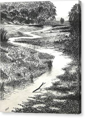 Louisiana Bayou Canvas Print by Garry McMichael