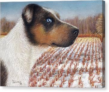 Louisiana Catahoula Leopard Dog Canvas Print by Stephanie Woerner