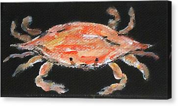 Louisiana Crab Canvas Print by Katie Spicuzza