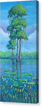 Louisiana Cypress Canvas Print by Suzanne Theis