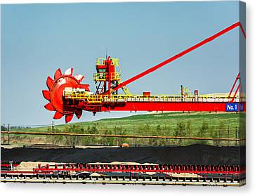 Louisiana Giant 3 Canvas Print by Steve Harrington