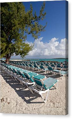Lounge Chairs On The Beach Canvas Print by Amy Cicconi