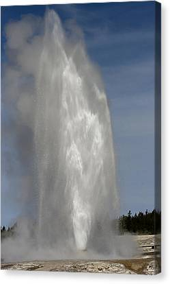 Love Beehive Geyser Canvas Print