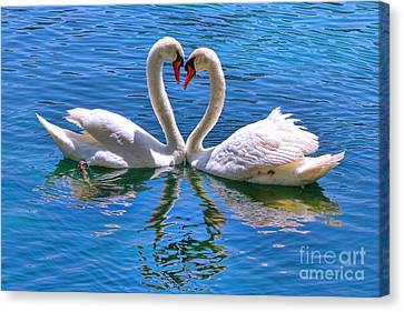 Love For Lauren On Lake Eola By Diana Sainz Canvas Print by Diana Sainz
