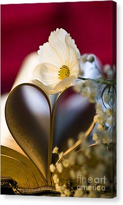 Love Is All Around Canvas Print by Jan Bickerton