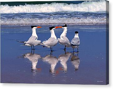 Love Is In The Air Canvas Print by George Bostian