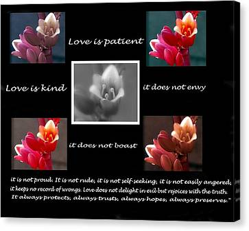 Love Is Patient Canvas Print by Ruth Jolly