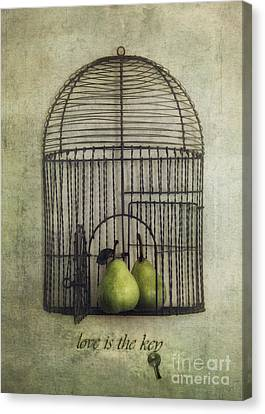 Love Is The Key With Typo Canvas Print by Priska Wettstein