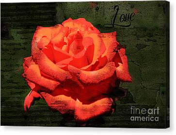 Canvas Print featuring the photograph Love N Rose by Mindy Bench