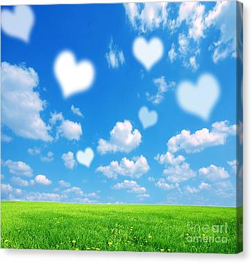 Love Nature Background Canvas Print by Michal Bednarek