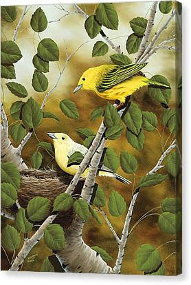 Love Nest Canvas Print by Rick Bainbridge